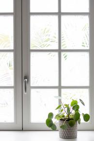 Bureaux aménagés comme à la maison chez DecoWorkers et Splandeed à Senlis, décorés par Coralie Vasseur, agence Carnets Libellule - vitrophanie Mel et Kio sur fenêtre à petits bois