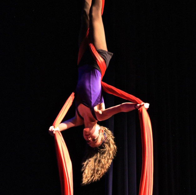 Weehawken's Aerial Dance program