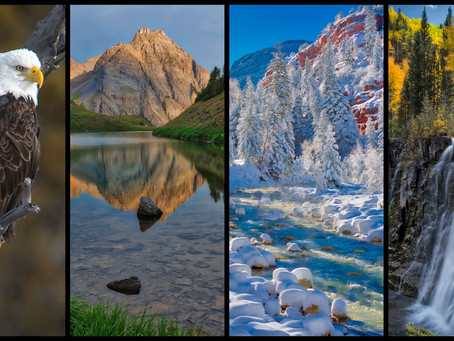 Past Exhibition: Four Seasons - Photos by Gary Ratcliff