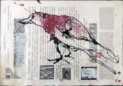 red-crow-rising-e1560453711562.jpg