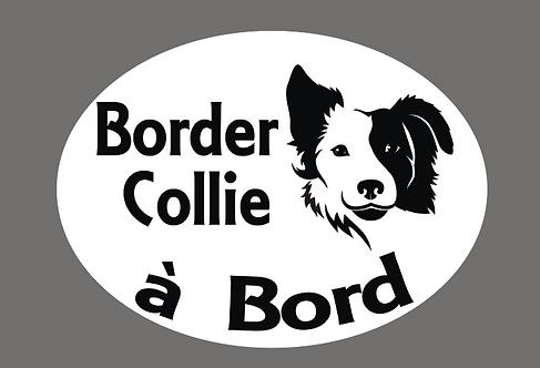 Border Collie à Bord - Personnalisation possible