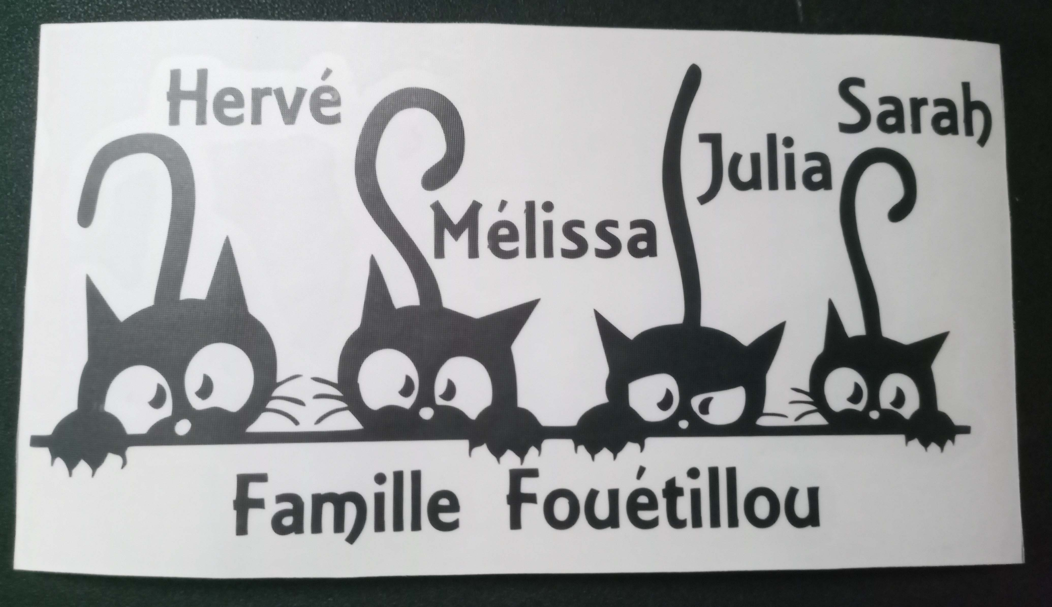 Bal Famille Chats