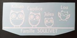 BAL Famille hiboux