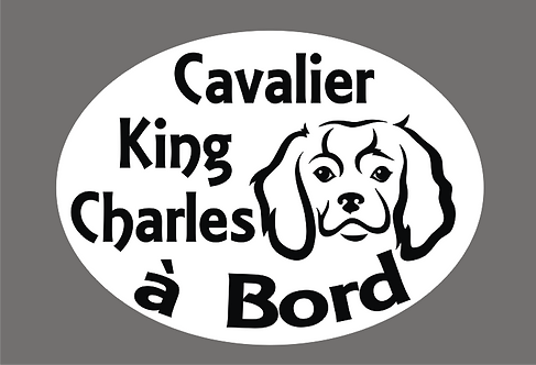 Cavalier King Charles à Bord - Personnalisation possible