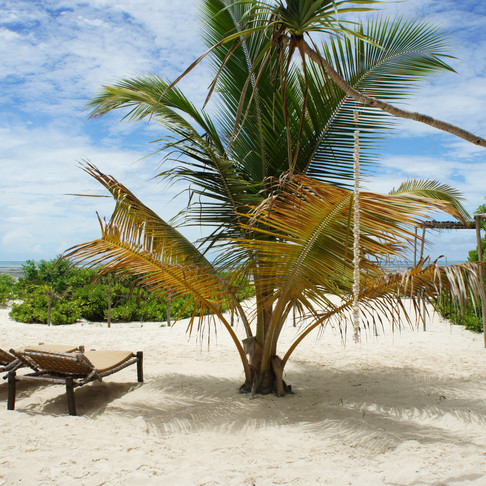 Zanzibar'da nerede kalınır - Sharazad Boutique Hotel