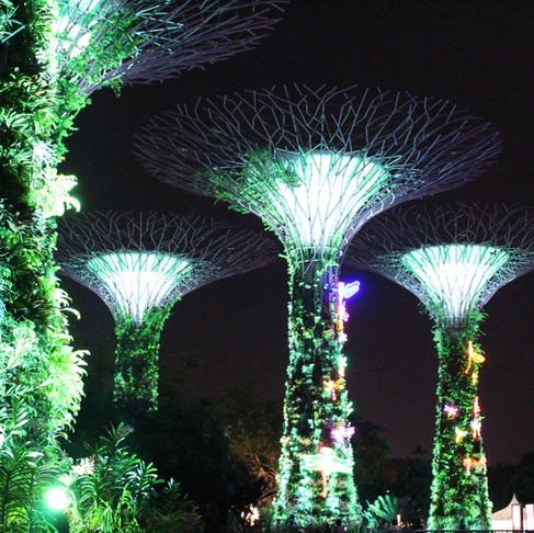 Singapur rehberi - Burası fazla mükemmel yahu