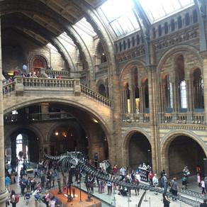 Londra müzeleri - Hepsi bedava!!!