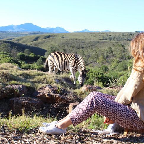 Cape Town'da safari - Gondwana Game Reserve