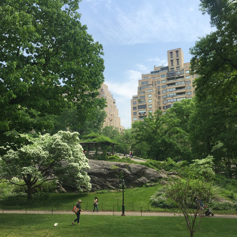 New York - Central Park & Uptown rehberi