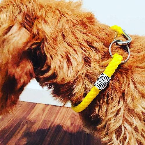 Dog Collar Simple