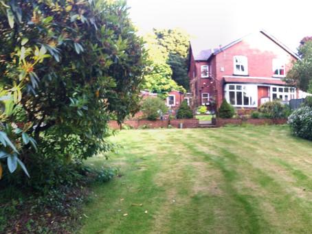 Lana's Garden