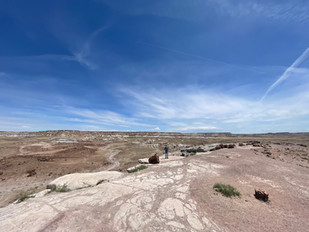 Badlands at Petrified Forest