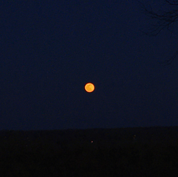Moonrise . . . the moon was large and orange and weird and wonderful tonite.