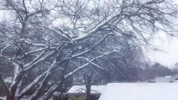Quiet, peaceful, miraculous snow
