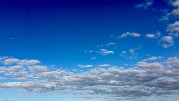 Anyone else staring at the sky, soaking in spring, hoping life becomes a little more normal, a little less exhausting?