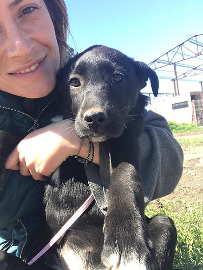 Kiki, 3/4 months