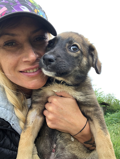 Matty, male pup born Feb