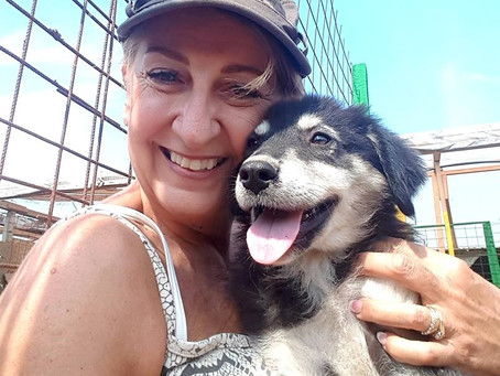 Volunteering at Our Shelter - Karen's experience in her own words.