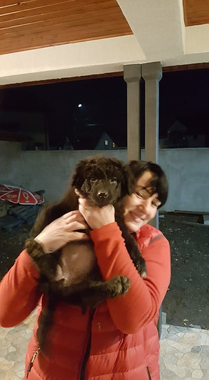 Daphne, born mid Nov