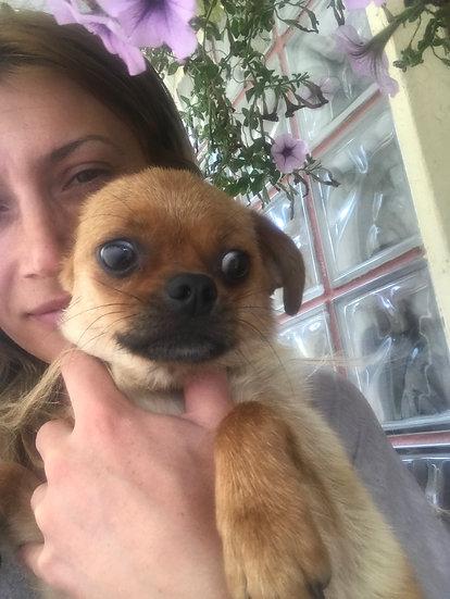 Rubine, born October 16, titchy