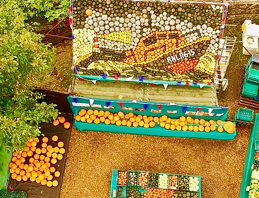 Display of Pumpkins in West Sussex