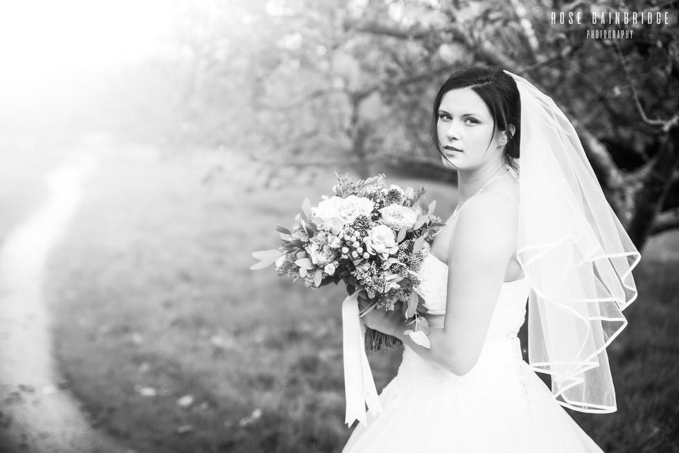 Adventure Brides--2.jpg