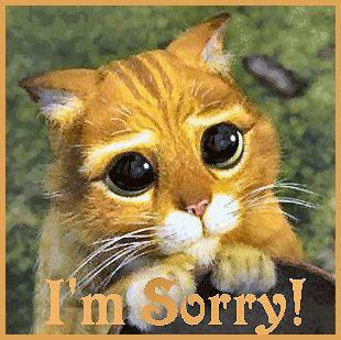 Et si nous arrêtions de nous excuser ?