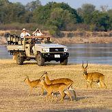 Pirschfahrt durch den South Luangwa Nationalpark.