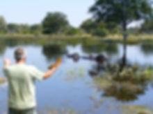 Reinhard Rhino Grohmann auf Safari beim Anblick auf eine Flusspferde-Familie.