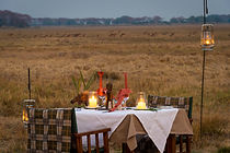 Rhino Safaris - Unforgettable Journeys Through Southern Africauxushotel, Unterkunft Sambia, Safari Lodge Zambia, Kleingruppen, Flugsafaris, Naturreisen, Exklusivreisen, Wilderness Safaris, Busanga Bush Camp, Kafue, Zambia