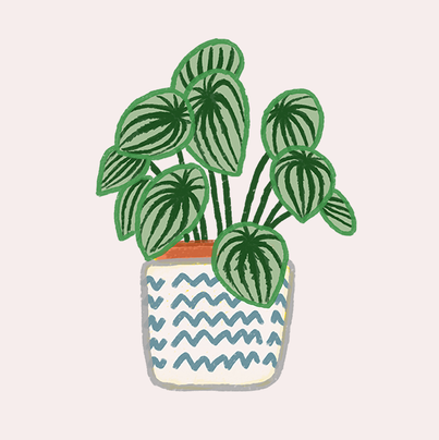 식물_07.png