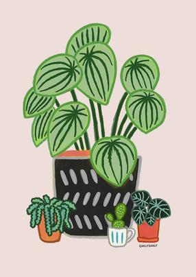 식물_02.png