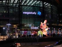COEX WINTER FESTIVAL X GOOLYGOGOLY/2018