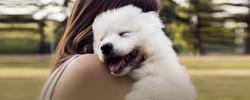 Trupanion Pet Insurance