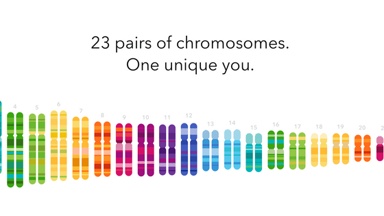 Get More DNA Matches Without Doing Another Test!!