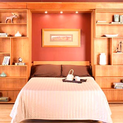 Library Murphy Wall Bed