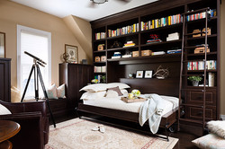 wall-bed-ladder-book-case