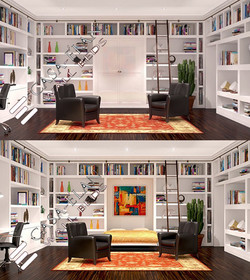 HOME OFFICE LIBRARY BED
