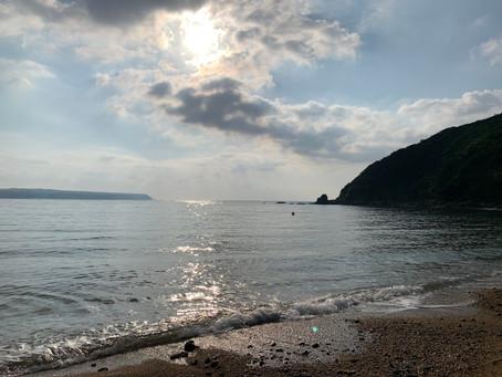 今日は近くの海岸