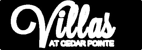VCP logo _ White.png