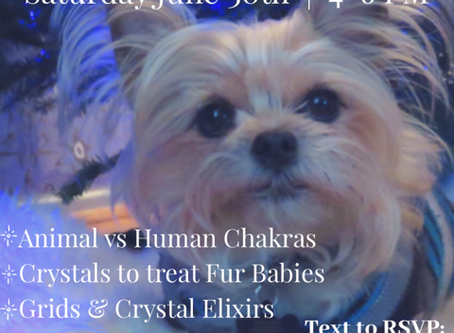 "Your Invited !! ""Crystal Healing...Fur Babies & Beyond"" ~CLASS~"
