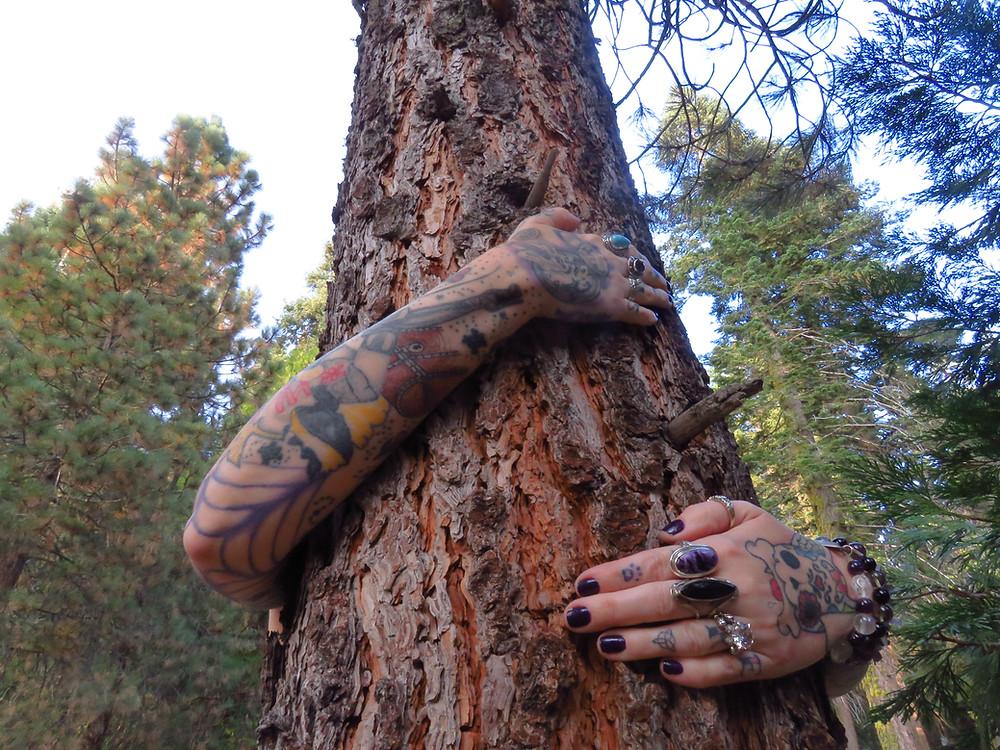 Tree Hug in Sequoia, Ca 2018