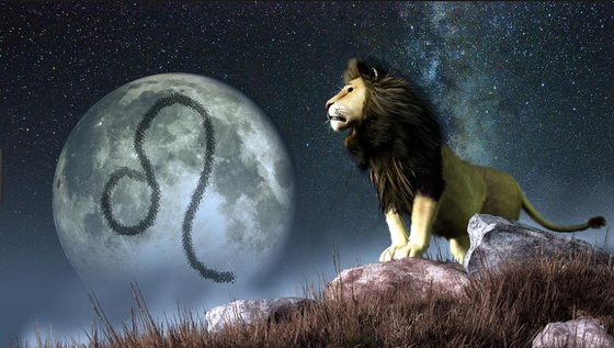 New Moon in Leo July 23rd, 2017