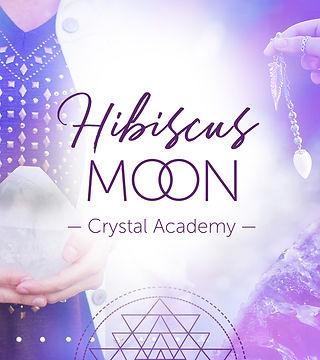 Hibiscus Moon .jpg