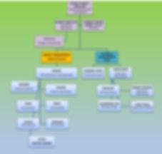 Org Chart - IQS Project.jpg