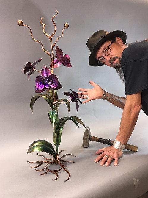 Phalaenopsis orchid (self standing)