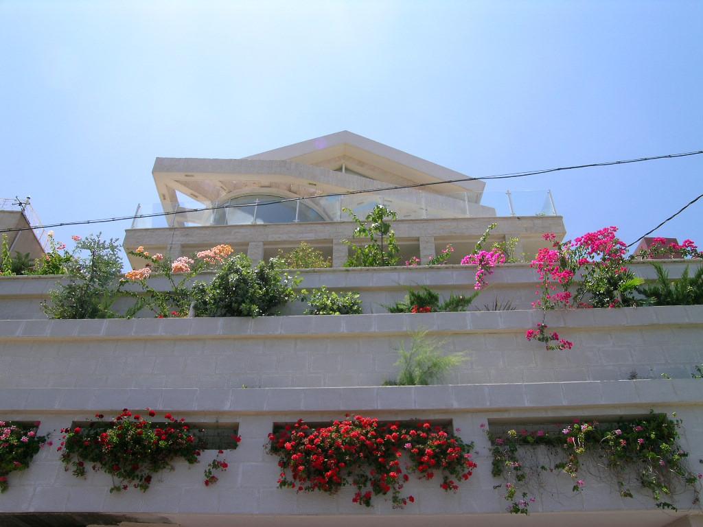 Shufman street Singl Home Hillside Desig