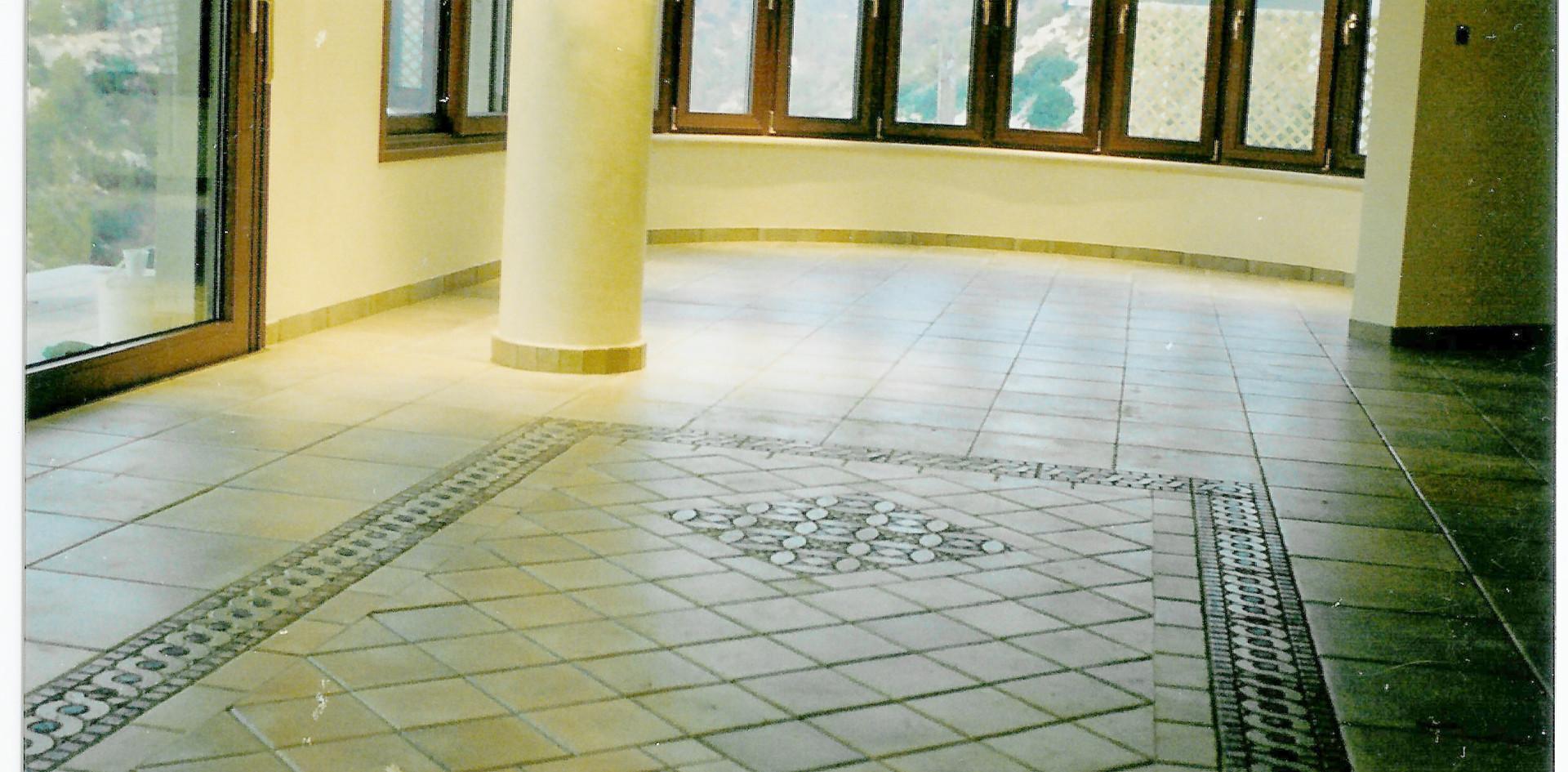 Tile Carpet Pool Level Goldberg House De