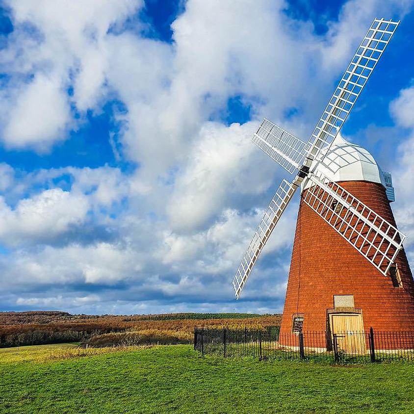 Vines, Tunnels of nature & Halnaker Windmill - Walk