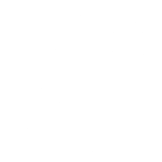 Lime & Marble WHITE.png